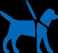 dog-walking-blue